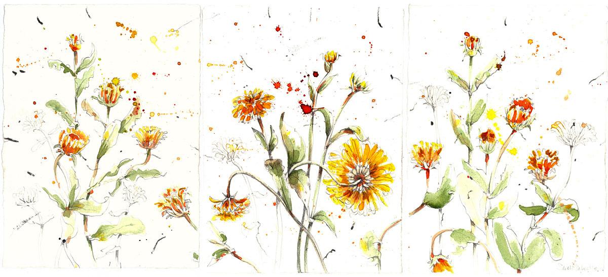 flower-3-panels-yellow-72dpi.jpg
